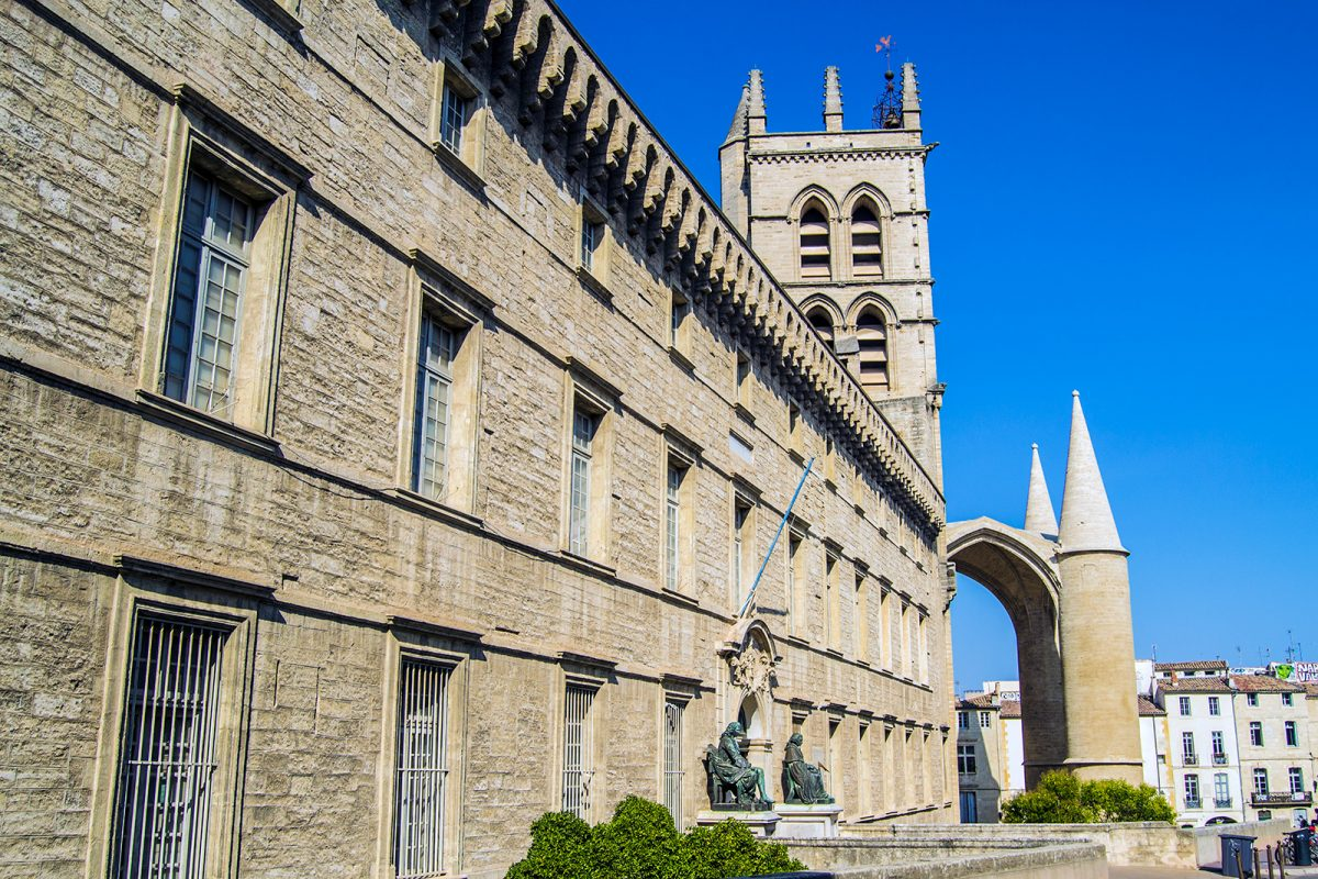 Facultad de medicina y Catedral de Montpellier - qué ver en Montpellier