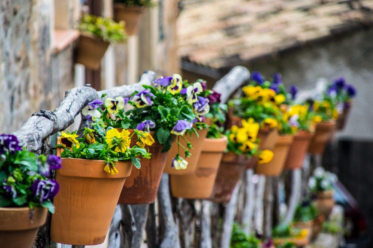 Flores en Valldemosa - Pueblos más bonitos de Mallorca
