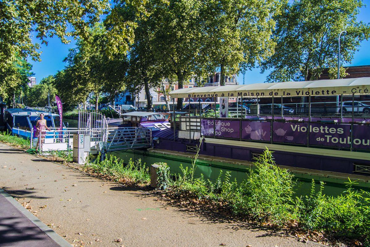 La Maison de la Violette - Toulouse