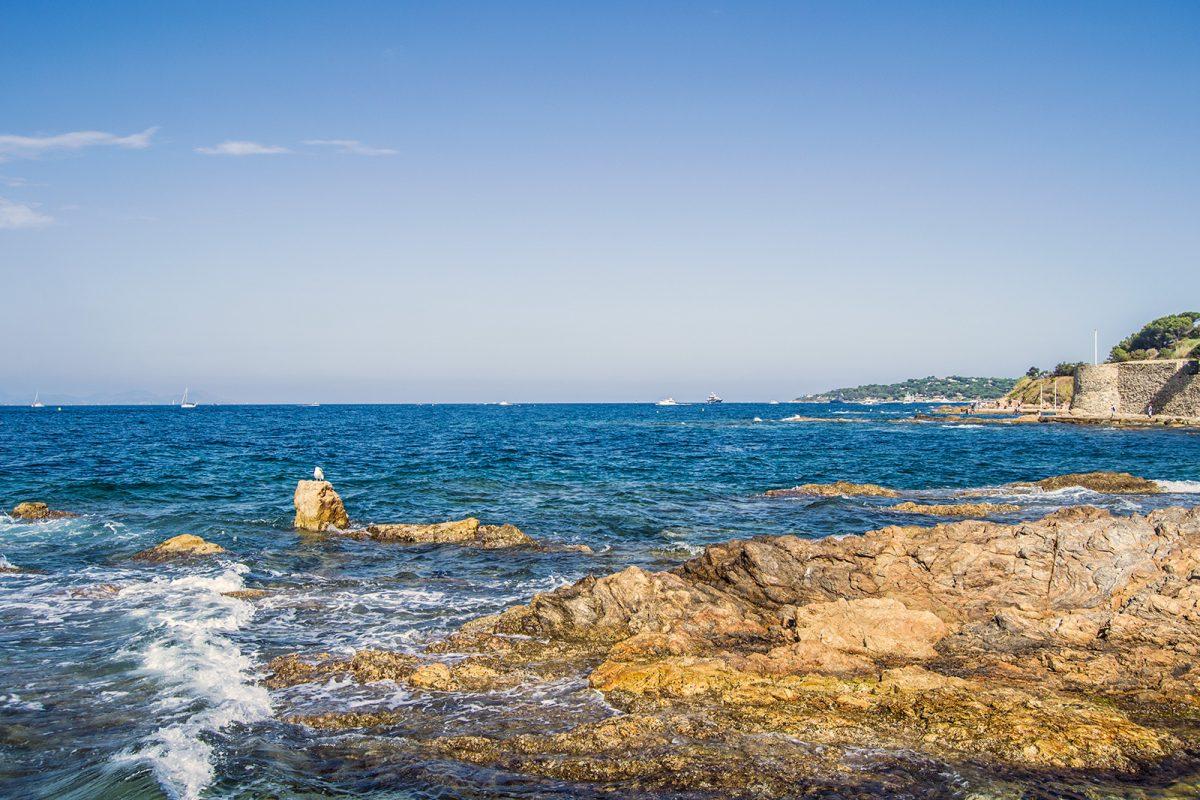 Mar y gaviotas en Saint-Tropez