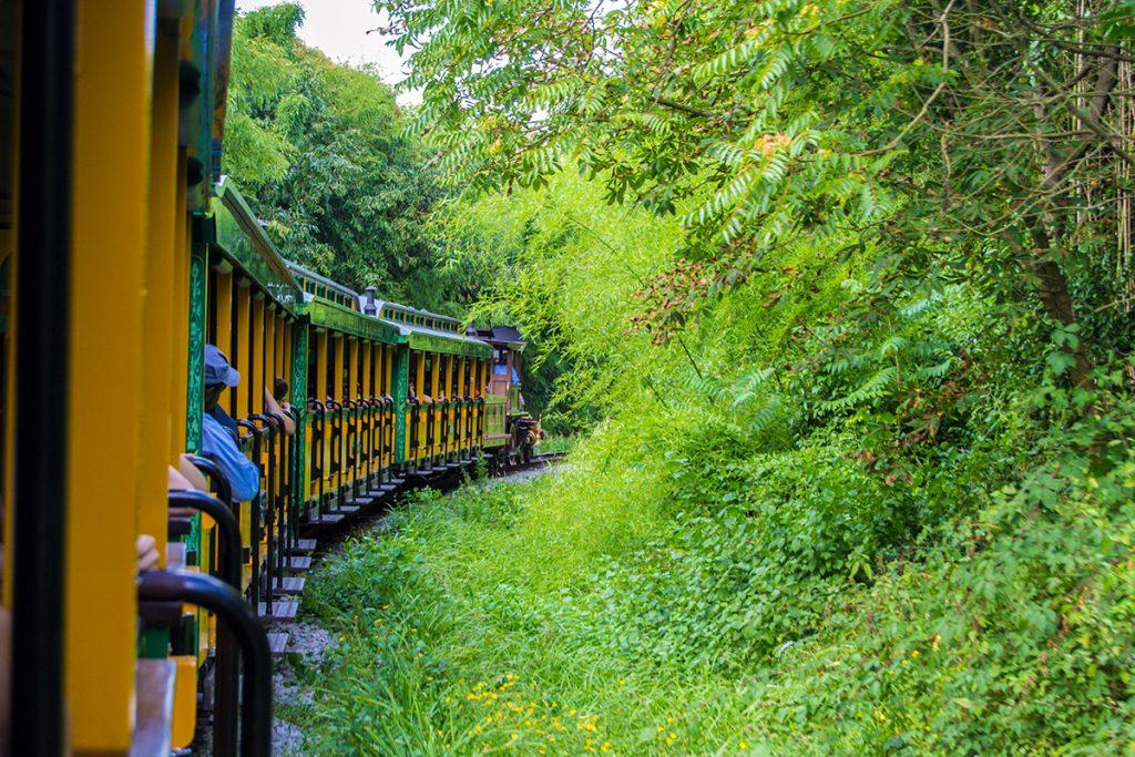 Tren que bordea Disneyland - Consejos Disneyland París