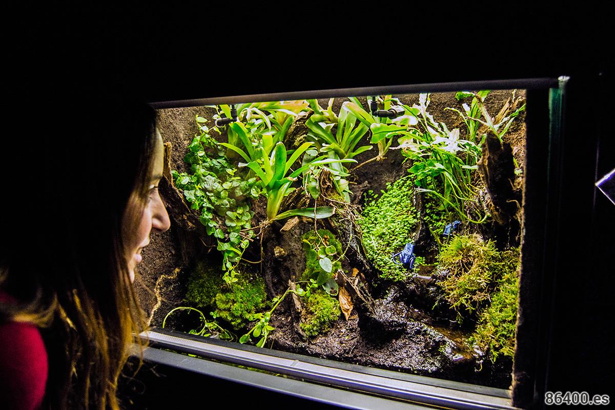 Nerea buscando bichos en Micropia - Recomendaciones Amsterdam