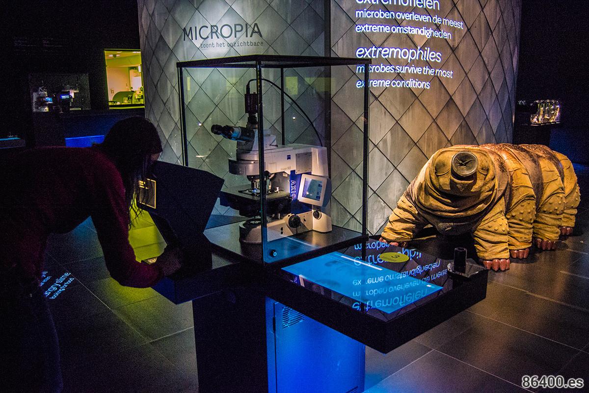 Nerea mirando por un microscopio en Micropia - Recomendaciones Amsterdam