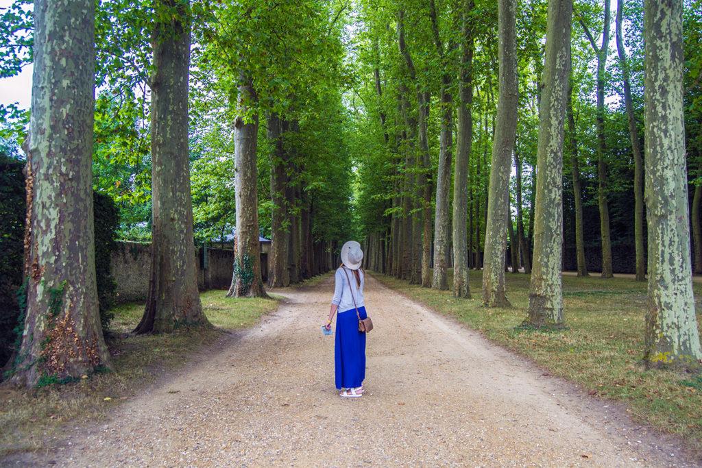 Nerea alucinando con los grandes árboles de los Jardines de Versalles – Palacio de Versalles desde París